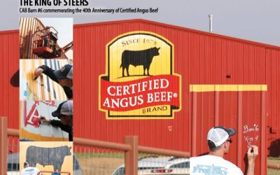 Certified Angus Beef Painted 40 Barns of Angus Breeders across the U.S.A.  to celebrate 40th Anniversary