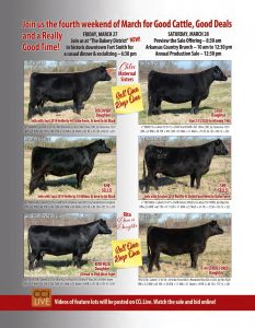 Belle Point Ranch March 2020 Sale